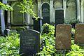 165viki Cmentarz Żydowski na Ślężnej. Foto Barbara Maliszewska.jpg
