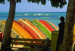 32d32c529b Photo of dozens of surfboards on rack. Each board is perpendicular to the  ground and. Longboards at Waikiki beach