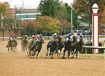Churchill Downs has hosted the Breeders' Cup eight times during the fall meet 2006BCJuvenileStreetSenseHiddenOnRail.jpg