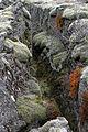 2008-05-16 13 31 42 Iceland-Gilsbakki.jpg