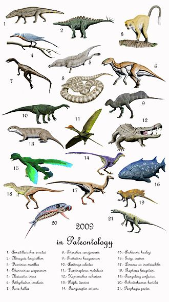 2009 in paleontology - Important taxa described (but not necessarily validly named) in 2009