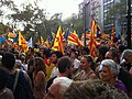 2012 Catalan independence protest (82).JPG