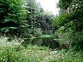20130912050DR Obernaundorf (Rabenau) Gückelgrund Poisenwald.jpg