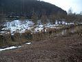 20150219 98 Wienerwaldsee (Large) (16555751416).jpg