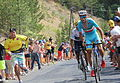 2015 Tour de France Stage 14 Quintana Nibali.JPG