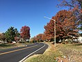 2016-11-18 11 44 51 View west along Franklin Farm Road at Dairy Lou Drive in the Franklin Farm section of Oak Hill, Fairfax County, Virginia during autumn.jpg