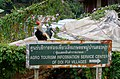 20171106 Doi Pui Village 0140 DxO.jpg