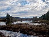 River Landing Lewis et Clark