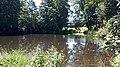 20200705 112130 July 2020 in Lodz Voivodeship.jpg