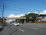 2334Elpidio Quirino Avenue NAIA Road 11.jpg