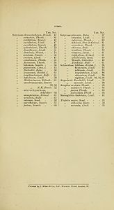 2 Harry Bolus - Orchids of South Africa - volume II (1911) - Index 3.jpg