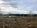 7975.Westpark.Crematorium.DeHeld.Hoendiep.Dela Waterskiplas.jpg