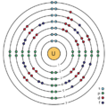 92 uranium (U) enhanced Bohr model.png