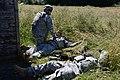 AFNORTH Battalion quarterly training at the Alliance Training Area Chievres, Belgium 140612-A-HZ738-057.jpg