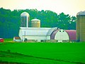 A Very Long Barn with Four Silos on Rauls Road - panoramio.jpg