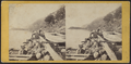 A View from Cold Spring, looking North, by E. & H.T. Anthony (Firm) 3.png