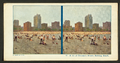 A bit of Chicago's 30-mile bathing beach, from Robert N. Dennis collection of stereoscopic views.png