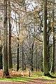 A good place to start a walk - geograph.org.uk - 1606934.jpg