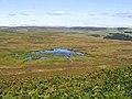 A moorland pond - geograph.org.uk - 550997.jpg