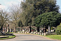 A road with tombs at City of London Cemetery and Crematorium 02.jpg