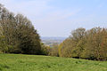 A view north at the west of High Beech, Essex, England.jpg