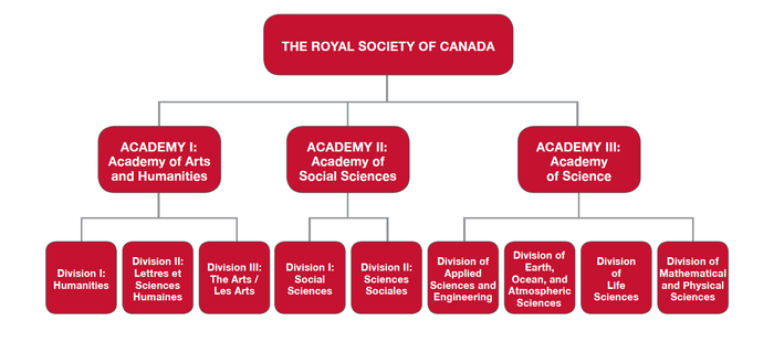 Academies of the RSC Organigram.png