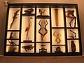 Academy of Natural Sciences, Philadelphia - IMG 7451.JPG