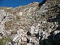 Aggenstein Gipfelwand.JPG