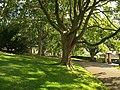 Alexandra Park, Bath - geograph.org.uk - 946542.jpg