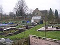 Allotments - Park House Road - geograph.org.uk - 633825.jpg