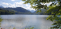 Alpsee.png