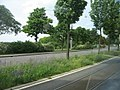 Am Aubuckel, Mannheim - geo.hlipp.de - 2464.jpg