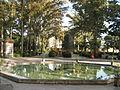 Amin al-Islami Park - Trees and Flowers - Nishapur 031.JPG