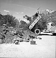 Amount of debris collected first day after flood. Truck dumping debris material stockpiled for road construction. ; ZION Museum (9d25ccb2585a432ead876323fc4cbc59).jpg