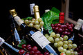 Amsterdam - Merlot and Grapes - 0312.jpg