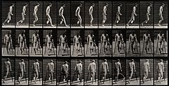 An amputee on crutches. Photogravure after Eadweard Muybridg Wellcome V0048744.jpg