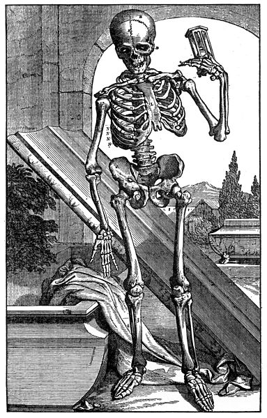 File:Anatomical figure; skeleton, 17th century. Wellcome M0000422.jpg