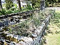 Ancienne fontaine-lavoir Saint Nicolas. (1).jpg
