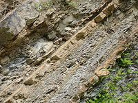 Anticlinal Lavelanet Marne Calacaire7.jpg