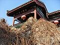 Aobishanzhuang, Daguanyuan.jpg