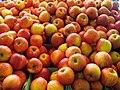 Apples (426234230).jpg