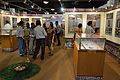 Archaeological Activities Exhibition - Directorate of Archaeology & Museums - West Bengal - Kolkata 2014-09-14 7915.JPG