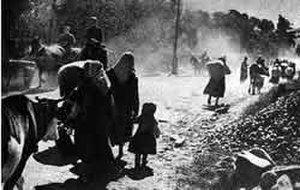 Turkish–Armenian War - Image: Armenians fleeing Kars