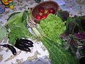 Aromat with vegetables.jpg