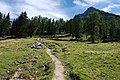 Arosa - trail 2.jpg