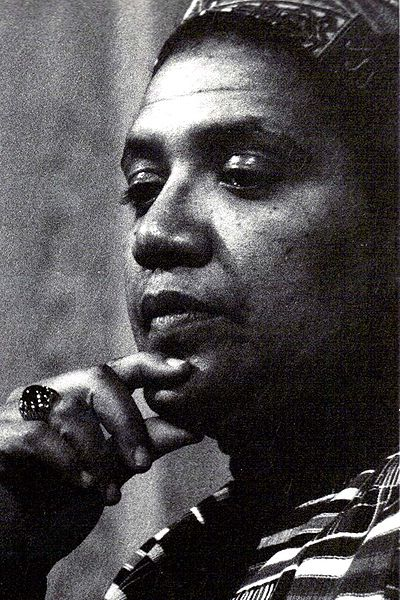 Picture of an author: Audre Lorde