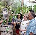 Australia's Foreign Minister Julie Bishop and Singapore's Foreign Minister K. Shanmugam meet the star attractions at Singapore Zoo's new koala exhibit, 20 May 2015 (cropped).jpg