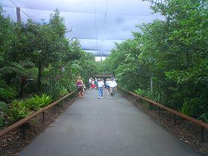Australia Zoo - Aviary at the Australia Zoo