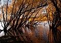 Autumn at Lake Tekapo NZ (10582699055).jpg