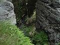 Břehyňský rybník, výpust - panoramio.jpg